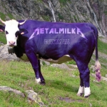 metalmilka - thomaslombard.com