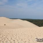seuls sur la dune