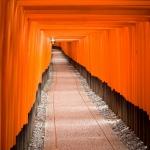 Kyoto Fushimi Inari 25082013-IMG_9361