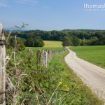 paysages-prairie-sud-ouest Besancon-2-sept-2014